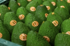 Aongatete_avocados_pack-4-of-20